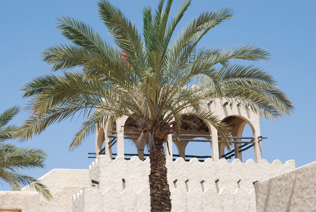 What to visit in Doha: Zekreet and Film City - www.bonjourchiara.com