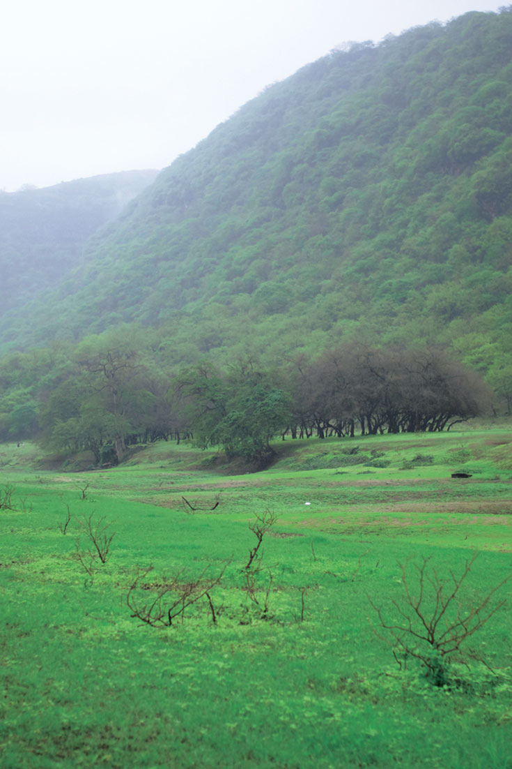 My Travel // Oman 2016 Best Places To Visit In Salalah